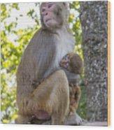 Monkey Mom Wood Print