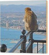 Monkey Overlooking Spain Wood Print