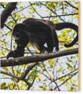 Monkey2 Wood Print