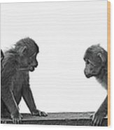 Monkeys Getting Ready For Fight At Chinese Temple Wood Print