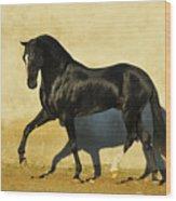 Monmartr Wood Print