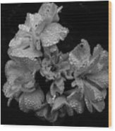 Mono Flower Chrome Wood Print