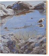 Mono Lake Wood Print