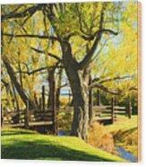 Mono Lake Garden Bridge Wood Print