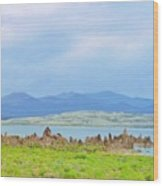 Mono Lake Image Wood Print