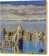 Mono Lake Spires Wood Print