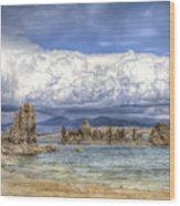 Mono Lake Tufas And Clouds Wood Print
