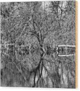 Monochrome Autumn Reflections Wood Print