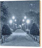 Monochrome Blue Nights Boston Public Garden Snow Storm Ma Massachusetts Bridge Lights Wood Print