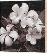 Monochrome Hawaii No. 3 Wood Print