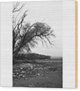 #monochrome #lake #landscape  #stausee Wood Print