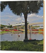 Monorail At Epcot Wood Print
