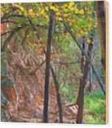 Monrovia Canyon In Fall Wood Print