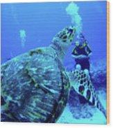 Monster Turtle Attacks Jeanne Wood Print