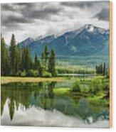 Montana Beauty Wood Print