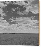 Montana, Big Sky Country Wood Print