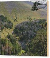Montana Call Of The Wild Wood Print