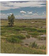 Montana Country And Tree Wood Print