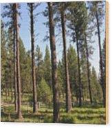 Montana Country  Wood Print
