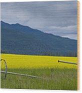 Montana Gold Wood Print