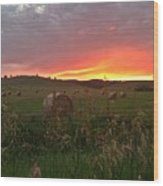 Montana Hayfield Sunset Wood Print