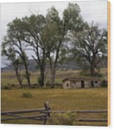 Montana Homestead Wood Print