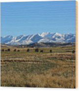 Montana Mountains Big Sky Wood Print