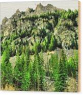Montana Mountains In Autumn  Wood Print
