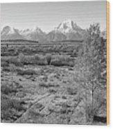 Montana Mountainscape Wood Print