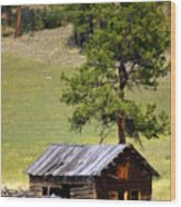 Montana Ranch 2 Wood Print