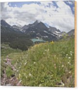 Montana Rolling Wildflowers Wood Print