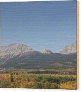 Montana View Wood Print