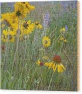 Montana Wildflowers Wood Print