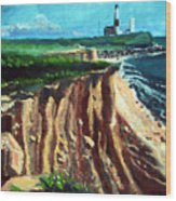 Montauk Camp Hero 04a Wood Print