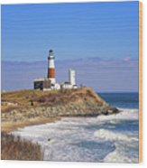 Montauk Point From Camp Hero Wood Print