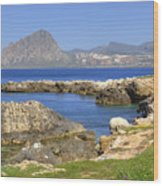 Monte Cofano - Sicily Wood Print
