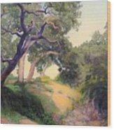 Montecito Dry River Oaks Wood Print