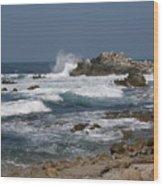 Monterey Coastline Wood Print