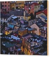 Monterosso By Night Wood Print