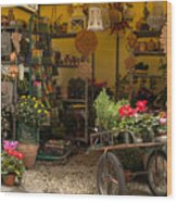 Monterosso Outdoor Shop Wood Print