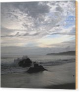 Montezuma Beach  Wood Print