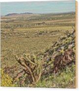 Montezuma Rd-borrego Occitillo Wells View Wood Print