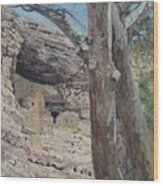 Montezuma's Castle Wood Print