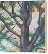 Monticello Tree Wood Print