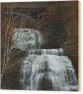Montour Falls Wood Print