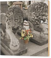 Montparnasse Cemetery Wood Print