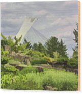 Montreal Biodome Backdrop Wood Print