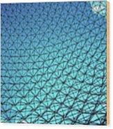 Montreal Biosphere Wood Print