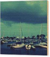 Montrose Harbor Evening Wood Print