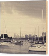 Montrose Harbor Skyline Wood Print